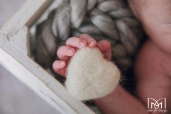 photo nouveau né jura lons le saunier mathilde millet